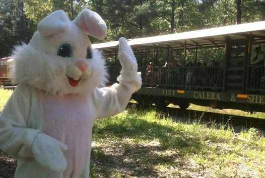 Heart_Of_Dixie_Railroad_Museum-Cottontail